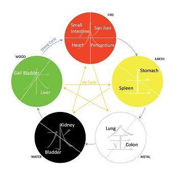 Vijf Elementen Acupunctuur; hout, vuur, aarde, metaal, water